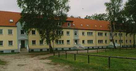 sanierte 2-Raumwohnung in ruhiger Wohnlage