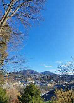 Stilvolle, geräumige und neuwertige 4-Zimmer-Wohnung mit Balkon und EBK in Baden-Baden