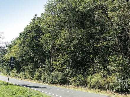 2,2 ha Waldfläche