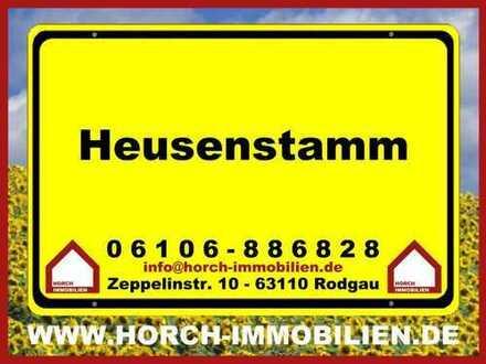 (((ZENTRAL))) 1-Zimmer-Apartement, Heusenstamm
