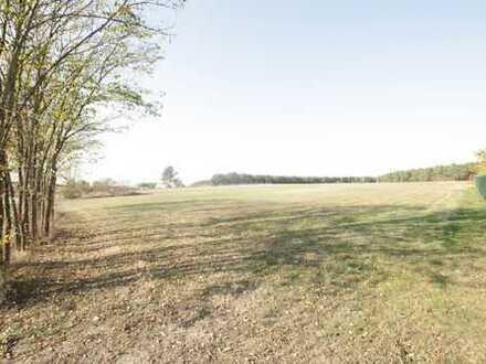 Ruhige Dorflage - Bauland zu verkaufen!