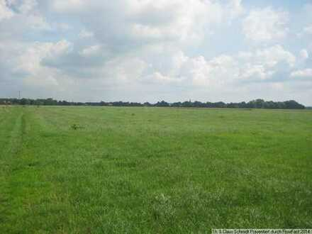 4,9391 Hektar arrondiert in Großenmeer-Barghorn