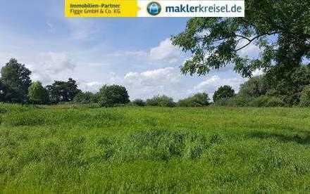 Für den Investor/ Bauträger: großes Areal in Deichnähe! Preis auf Anfrage!!!