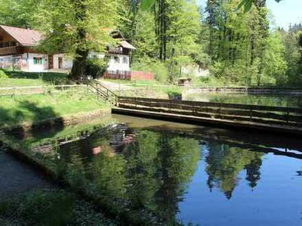 NATUR PUR in Bad Kohlgrub