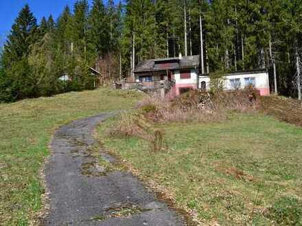 Ein Haus für Handwerker und Naturliebhaber - direkt am Waldrand!