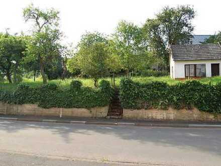 BERNDORF-DORFLAGE, knapp 2 km von Hillesheim, erschlossenes Baugrundstück