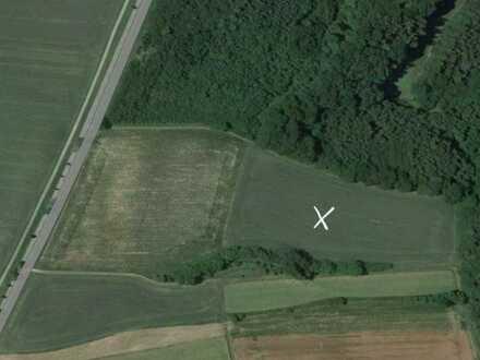 Landwirtschaftliches Grundstück- Acker 1,63 ha bei Kemnat
