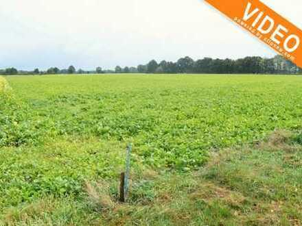 Zwischen Hopsten und Schale... Investieren Sie in die Landwirtschaft!