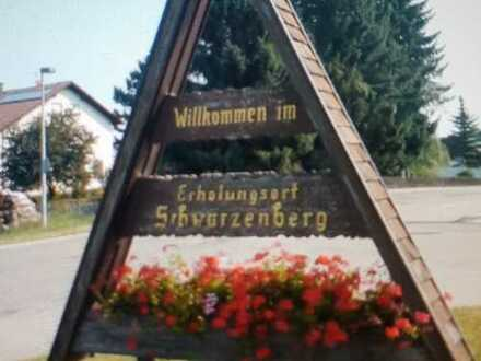 Vollständig renovierte 3-Zimmer-Hochparterre-Wohnung mit EBK in Schömberg