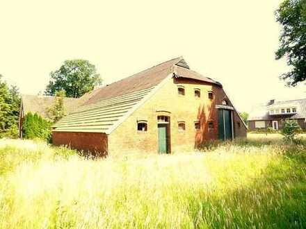 3069D - Bauernhaus mit Nebengebäude ( Backhaus ) in Uplengen - Neufirrel