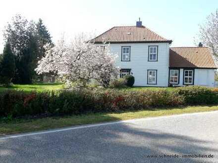 Einfamilienhaus mit Einliegerwohnung in Alt-Allermöhe - nahe der Dove-Elbe!