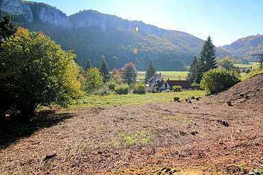 """Traumhaftes Donautal"" ca. 870 m² Baugrundstück mit weitem Panorama"