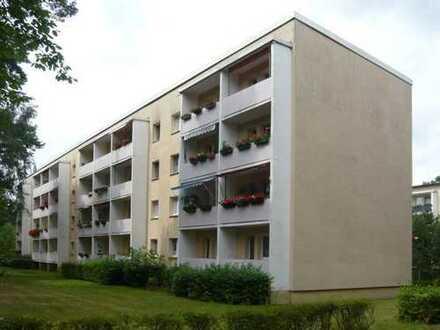 Elstal - Charmante 2-Zimmer Wohnung mit Balkon