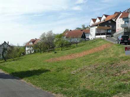 AUMÜLLER-Immobilien - Sonniges Eckgrundstück in Schwarzenfels mit phantastischen Fernblick