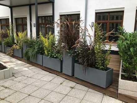 Schöne großzügige Loft-Wohnung mit großer Terrasse zu vermieten