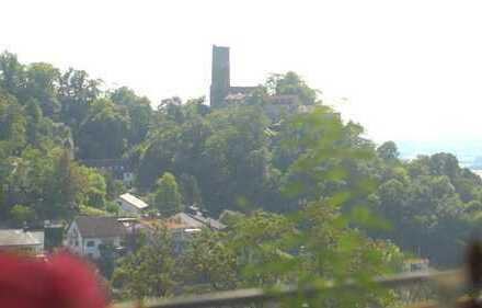 Schriesheim-Branich - Maisonette Wohnung mit 50 km Ausblick auf Rhein-Neckar-Ebene (Haus im Haus)