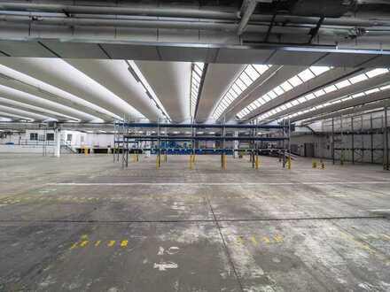 HALLENFLÄCHE - Lagerflächen / Produktionshalle mit Anlieferungstoren / Büro in 66500 Hornbach