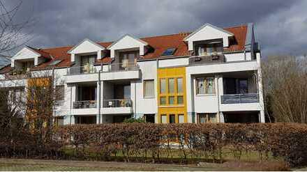 Geräumige Einzimmerwohnung mit Südbalkon