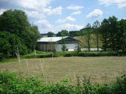 Industriehalle und Freiflächen mit viel Potenzial
