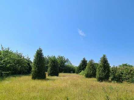 Idyll im Grünen in Breege-Juliusruh mit Terrasse und Pkw-Stellplatz