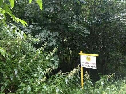 Idyllischer Bauplatz im Herzen von Sommerschenburg
