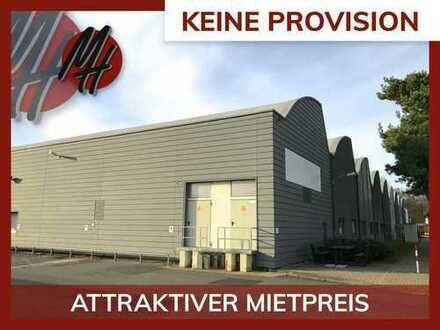 PROVISIONSFREI! Kaltlagerflächen (250 qm) zu vermieten