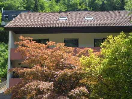 Vollständig renovierte 4-Zimmer-Wohnung mit Balkon in Heidelberg