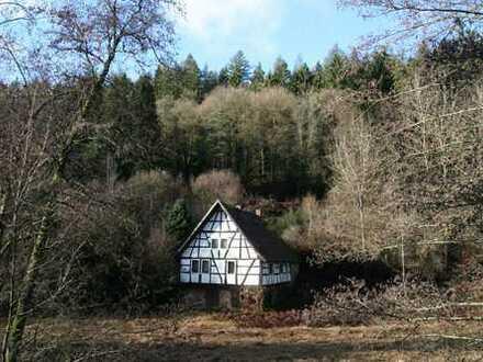 ***Verwunschene ehemalige Mühle mit Charme in Oberzent/Finkenbachtal***