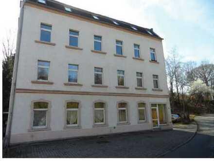 kleine, gemütliche 2-Raum-Wohnung am Randgebiet von Eckersbach