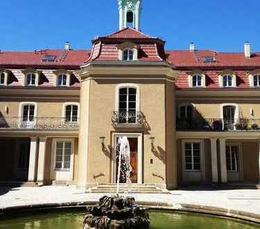 Wohnen im Schloß Wachwitz - 4-Zimmer-Wohnung mit Terrasse - separater Zugang zur Wohnung