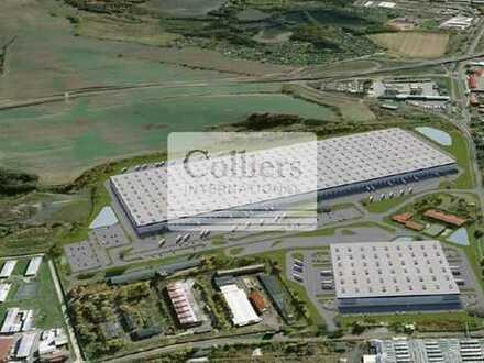 Ostrov/Tschechien | Logistikneubau | 10.000 - 121.000 m² | verfügbar 3. Quartal 2019