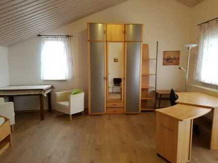 Schöne, geräumige ein Zimmer Wohnung in Ludwigsburg (Kreis), Vaihingen an der Enz