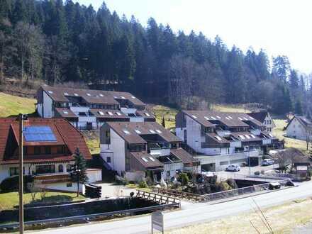 Sonnige 2 Zimmer-Wohnung mit Südterrasse im Kurort Bad Rippoldsau