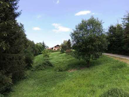 Alleinlage - sehr großes Grundstück in Eislingen - Freiraum für Wohnträume in leichter Hanglage