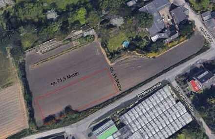 2500 m² Baugrundstück und 5000 m² Ackerland im Herzen von Hürth Fischenich