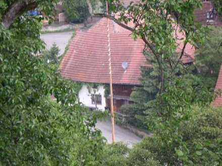 Altes Bauernhaus im Schwarzwald Nähe Wutachschlucht