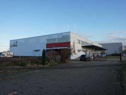 Große Lagerhalle mit Gastroflächen in Groß-Rohrheim zu verkaufen