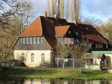Luxus-Maisonette-Wohnung direkt an der Aller, Loggia, Süd-West-Garten, 4,5 Zimmer, EBK, DG-Studio