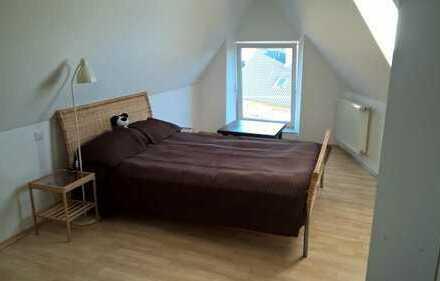 Schöne, geräumige ein Zimmer Wohnung in Breisgau-Hochschwarzwald (Kreis), Ihringen