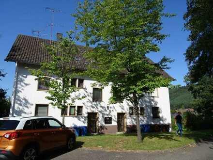 Günstige, vollständig renovierte 2-Zimmer-Dachgeschosswohnung in Ruppertsweiler