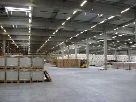 Neubauprojekt Lager-/ Produktionshalle