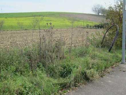 Ilsfeld - Grundstück voll erschlossen