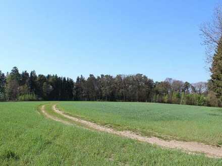 Landwirtschaftliche Flächen bei Aiterbach/Allershausen - provisionsfrei!