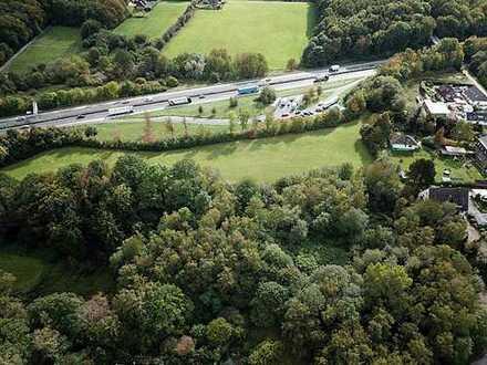 Online-Auktion: Unbebautes Grundstück - Waldfläche (O-394)