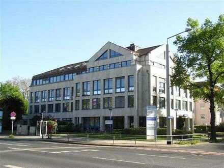 Lager-/Archivfläche - Bürohaus Tiergartenstr. 32 in Dresden