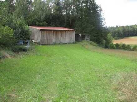 Weidefläche mit großen Schuppe für Tierhaltung geeignet.