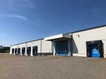 Cross-Docking-Halle mit Büro und befestigter Außenfläche