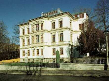 *BIRI* - Fantastische 5-Raum-Wohnung in einer Villa im Zentrum von Plauen