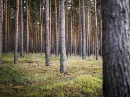 Waldgrundstücke in 67310 Hettenleidelheim bestehend aus 18 zusammenhängenden Flurstücken