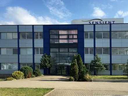 Forschen und Produzieren - Gewerbeobjekt mit vielen Möglichkeiten in Bitterfeld-Wolfen (bei Leipzig)